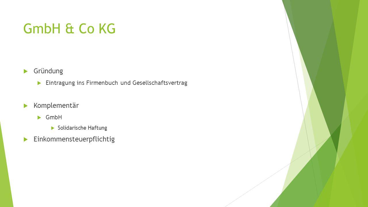 GmbH & Co KG Gründung Komplementär Einkommensteuerpflichtig