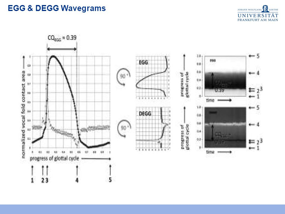 EGG & DEGG Wavegrams