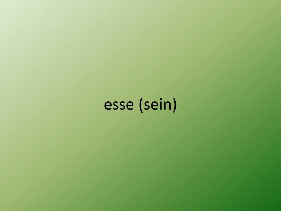 esse (sein)