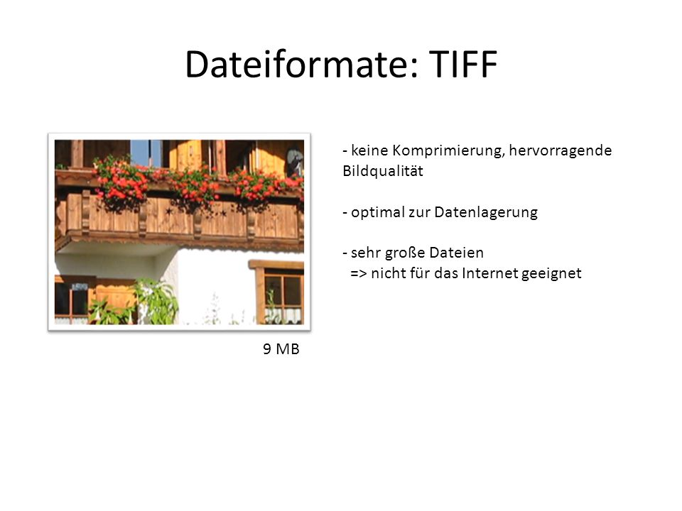 Dateiformate: TIFF keine Komprimierung, hervorragende Bildqualität