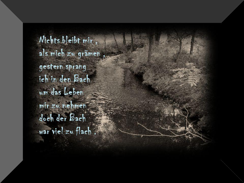 Nichts bleibt mir , als mich zu grämen , gestern sprang. ich in den Bach. um das Leben. mir zu nehmen.
