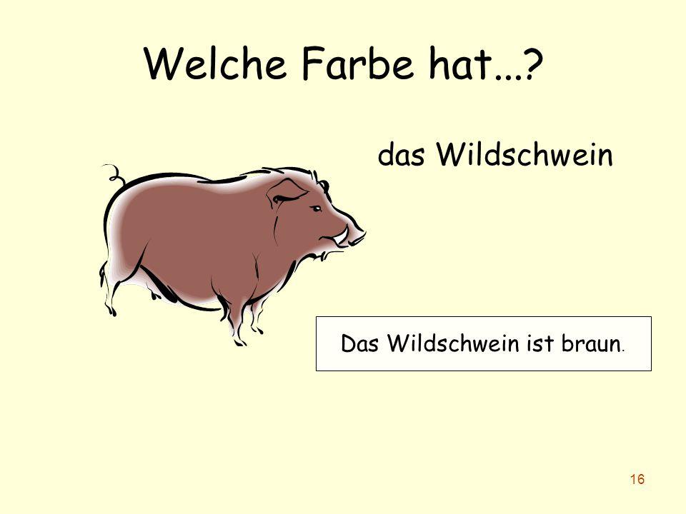Das Wildschwein ist braun.