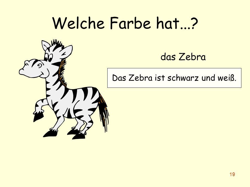 Das Zebra ist schwarz und weiß.