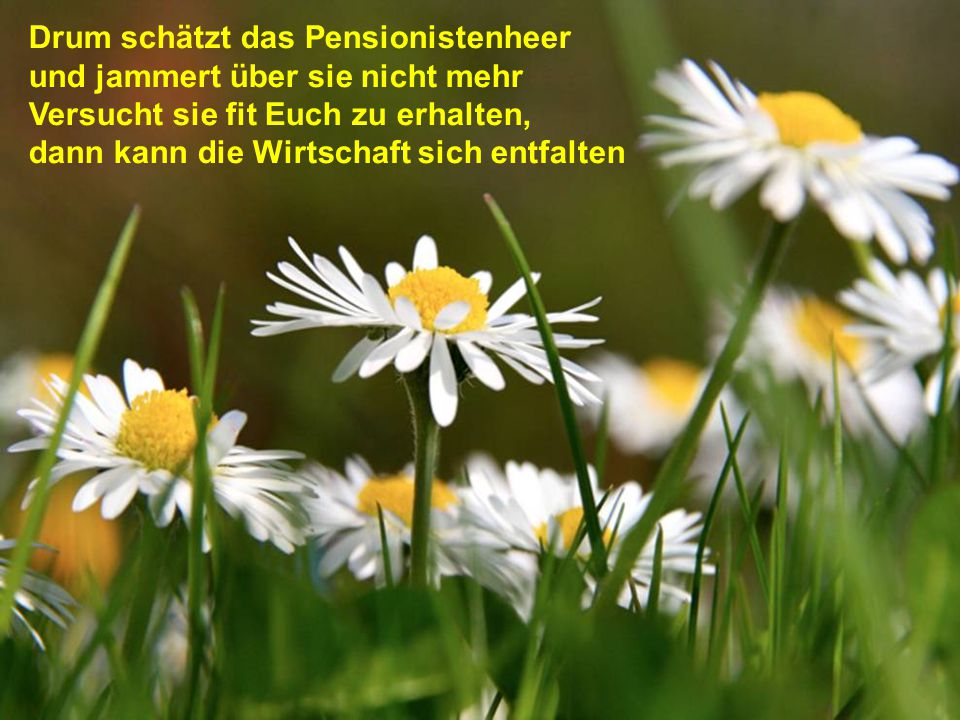 Drum schätzt das Pensionistenheer