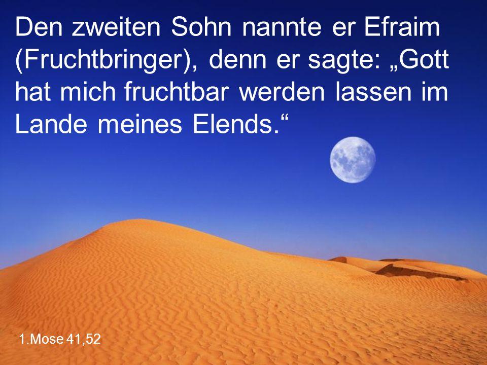 """Den zweiten Sohn nannte er Efraim (Fruchtbringer), denn er sagte: """"Gott hat mich fruchtbar werden lassen im Lande meines Elends."""