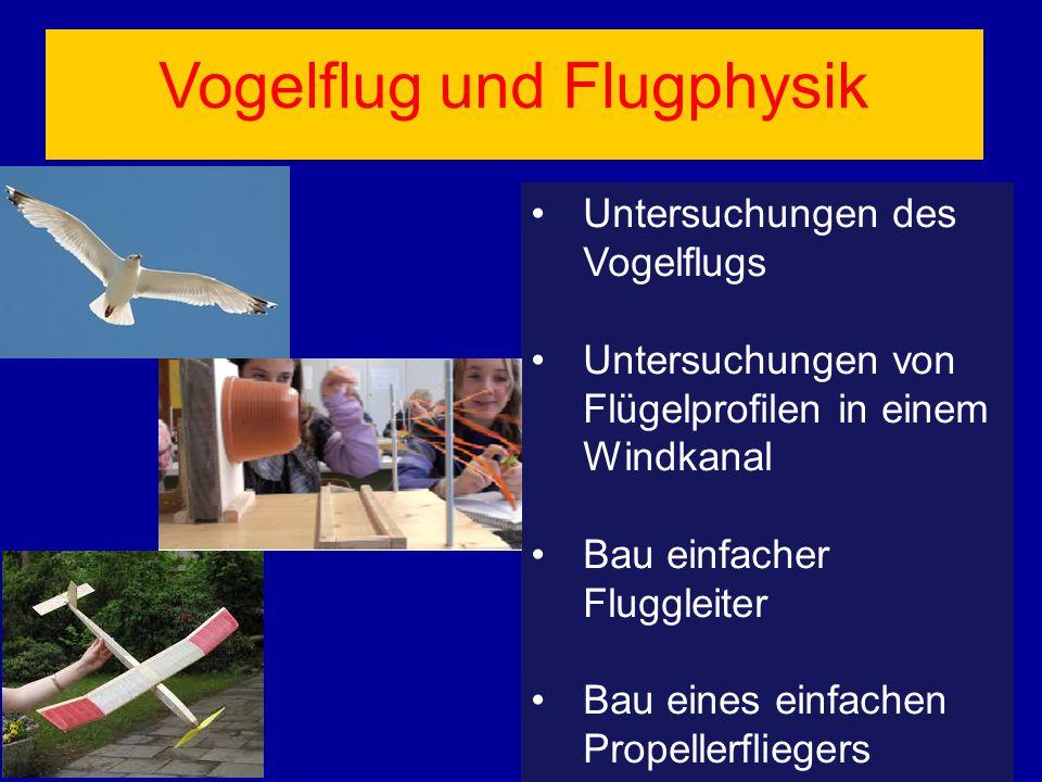 Vogelflug und Flugphysik
