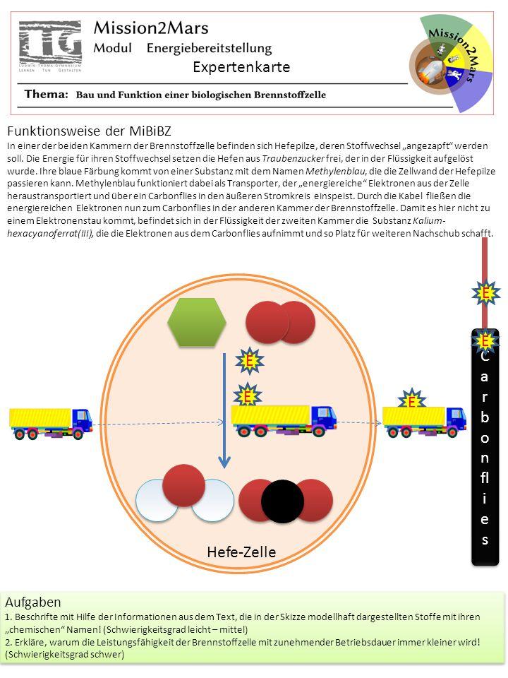 Expertenkarte Carbonflies E Hefe-Zelle Funktionsweise der MiBiBZ
