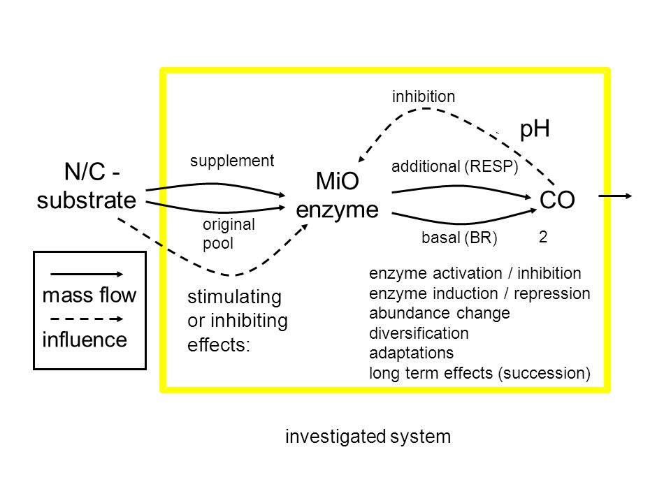 pH N/C - MiO substrate CO2 enzyme mass flow influence stimulating