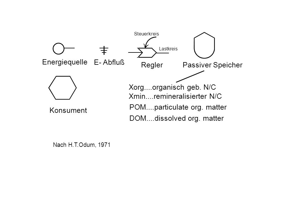 Xmin....remineralisierter N/C POM....particulate org. matter Konsument