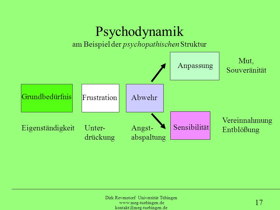 am Beispiel der psychopathischen Struktur