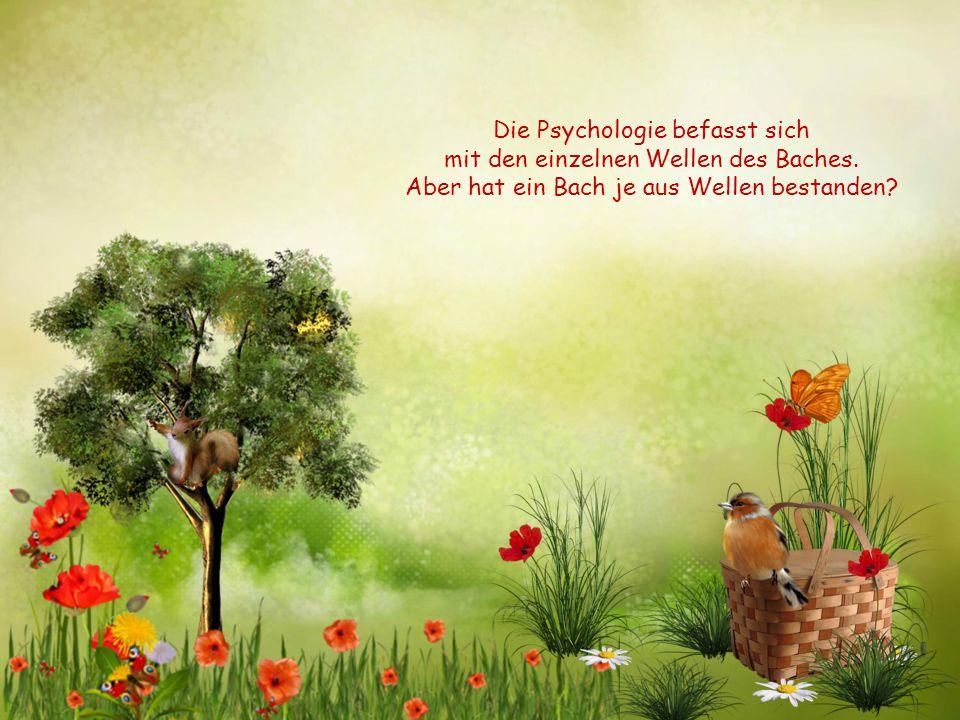Die Psychologie befasst sich mit den einzelnen Wellen des Baches.