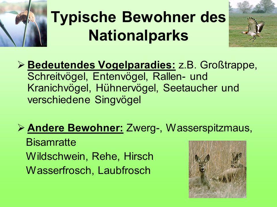 Typische Bewohner des Nationalparks