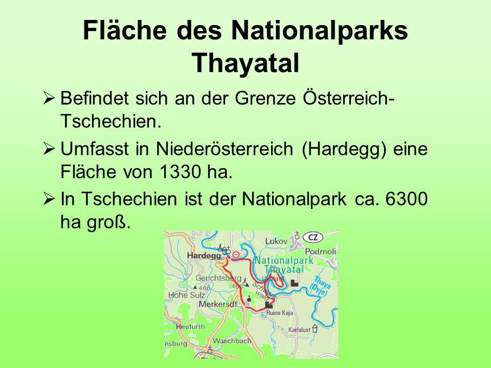 Fläche des Nationalparks Thayatal