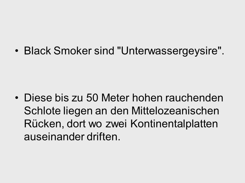Black Smoker sind Unterwassergeysire .