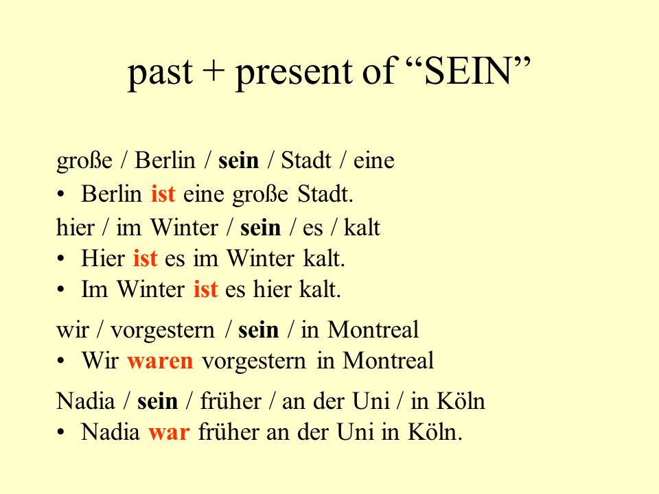 past + present of SEIN