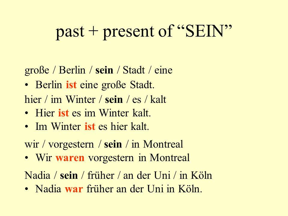 past + present of SEIN