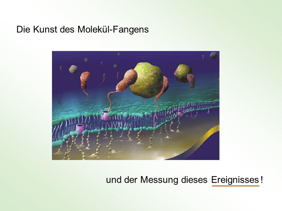 Die Kunst des Molekül-Fangens