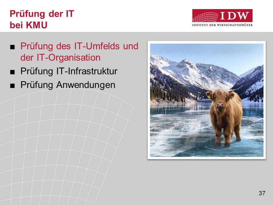 Prüfung des IT-Umfelds und der IT-Organisation