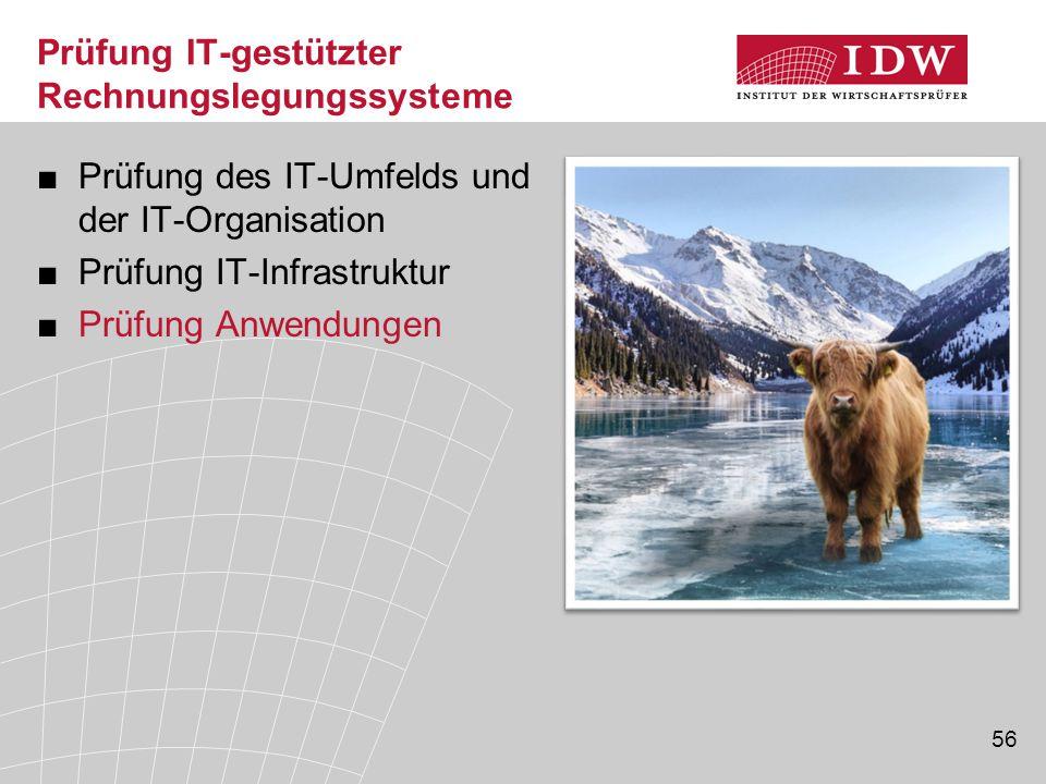 Prüfung IT-gestützter Rechnungslegungssysteme