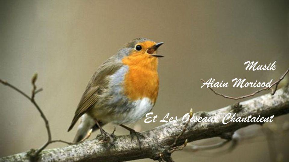 Musik Alain Morisod Et Les Oiseaux Chantaient