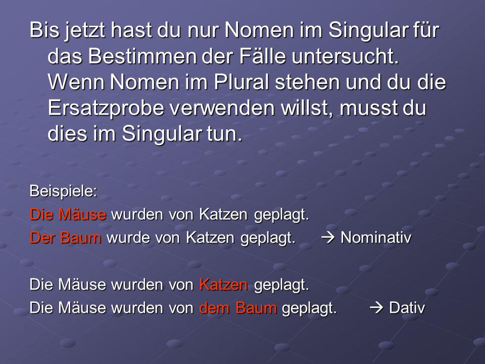 Bis jetzt hast du nur Nomen im Singular für das Bestimmen der Fälle untersucht. Wenn Nomen im Plural stehen und du die Ersatzprobe verwenden willst, musst du dies im Singular tun.