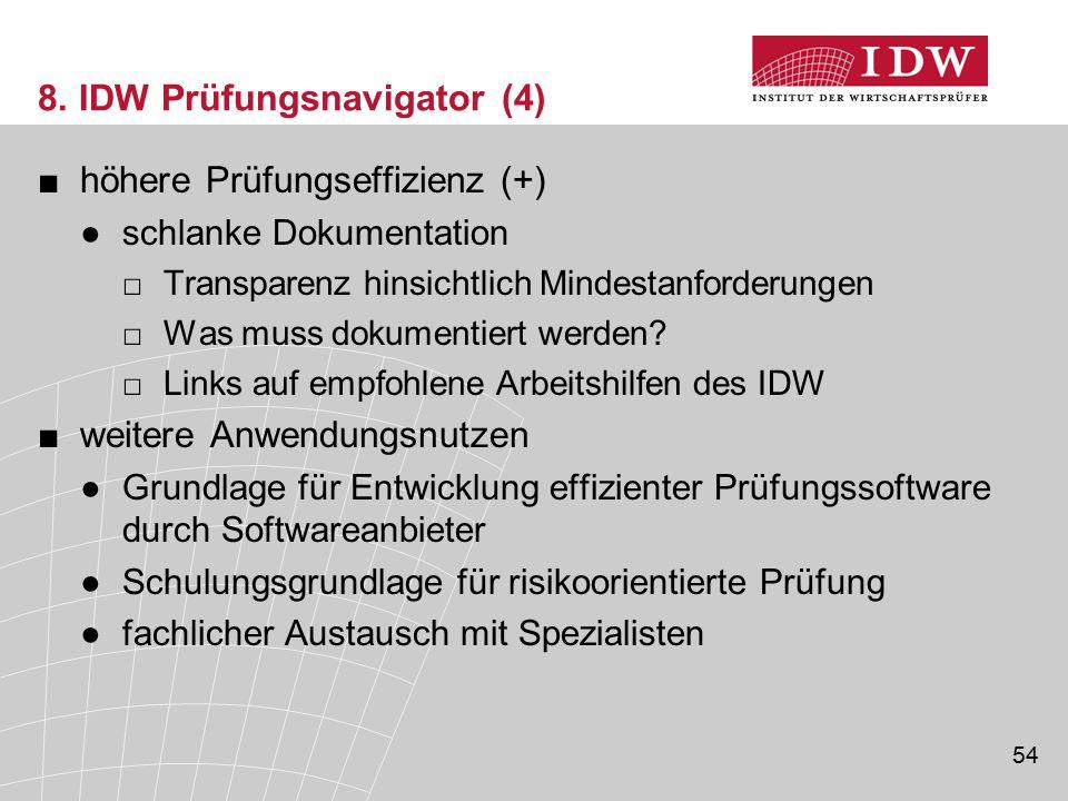 8. IDW Prüfungsnavigator (4)
