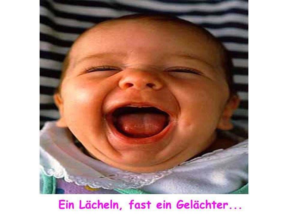 Ein Lächeln, fast ein Gelächter...