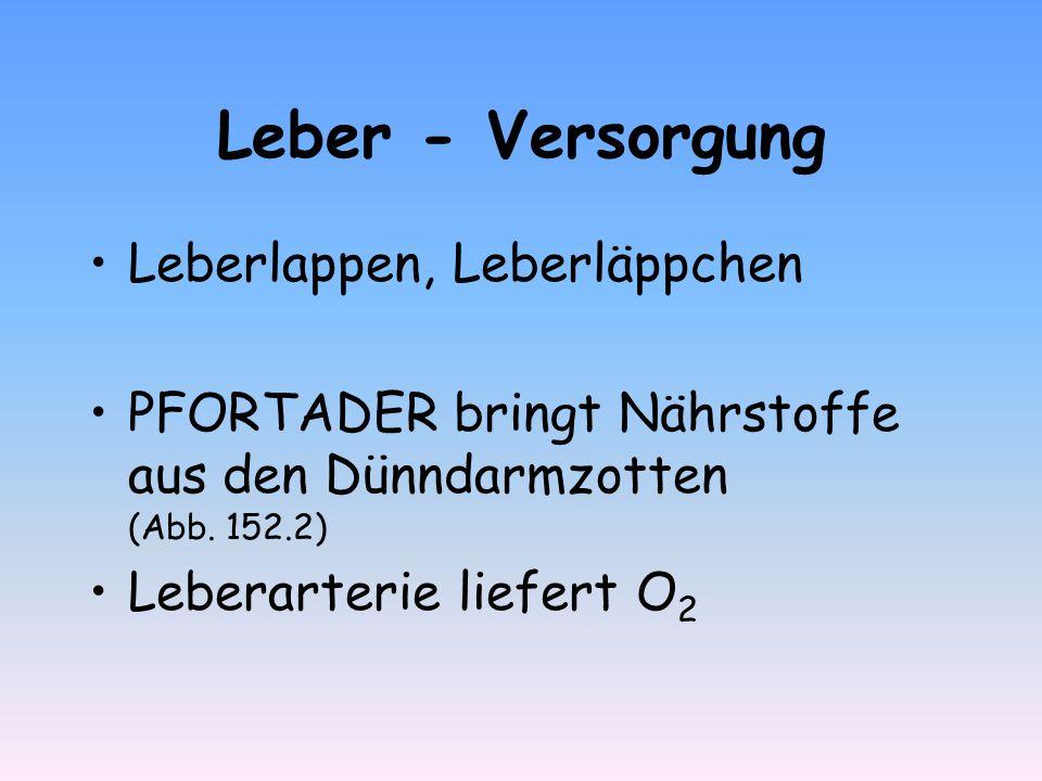 Leber - Versorgung Leberlappen, Leberläppchen - ppt video online ...