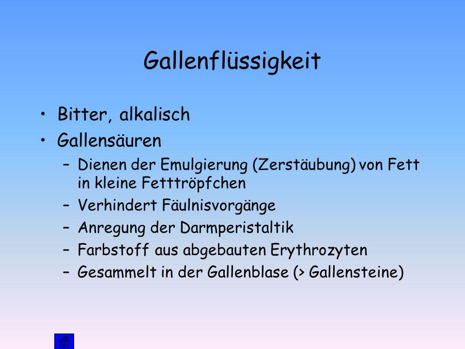 Gallenflüssigkeit Bitter, alkalisch Gallensäuren