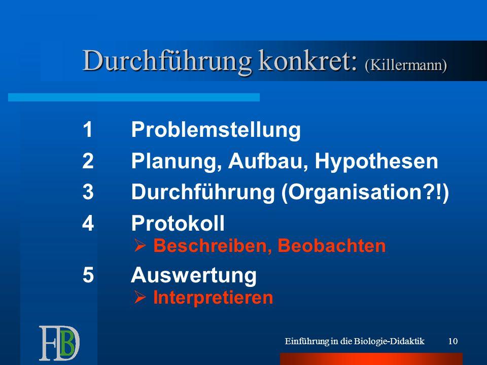 Durchführung konkret: (Killermann)