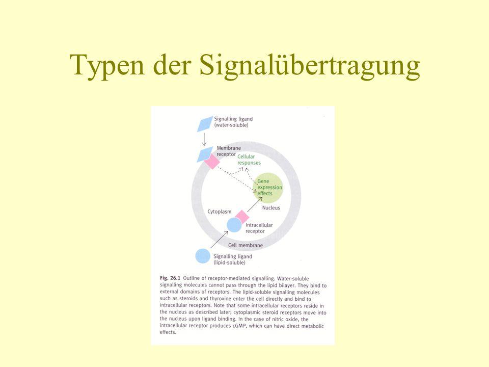 Typen der Signalübertragung