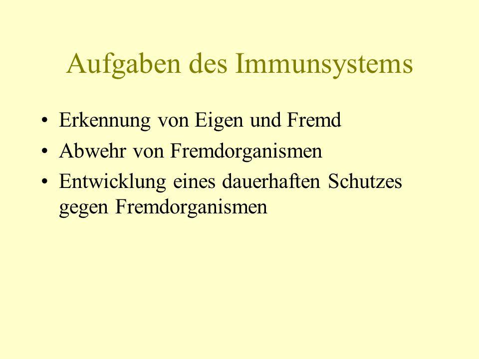 Aufgaben des Immunsystems