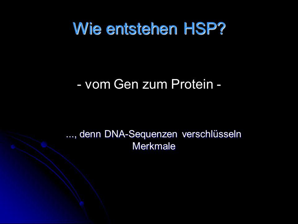 ..., denn DNA-Sequenzen verschlüsseln Merkmale