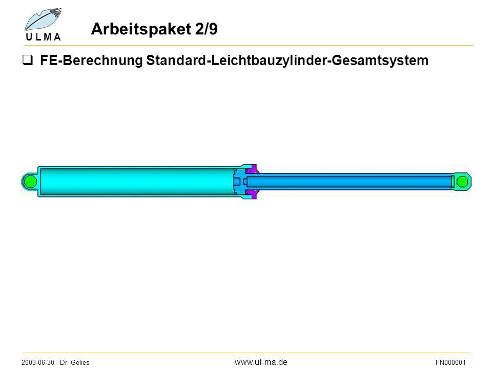 Arbeitspaket 2/9 FE-Berechnung Standard-Leichtbauzylinder-Gesamtsystem
