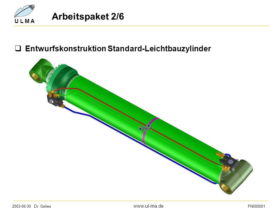 Arbeitspaket 2/6 Entwurfskonstruktion Standard-Leichtbauzylinder
