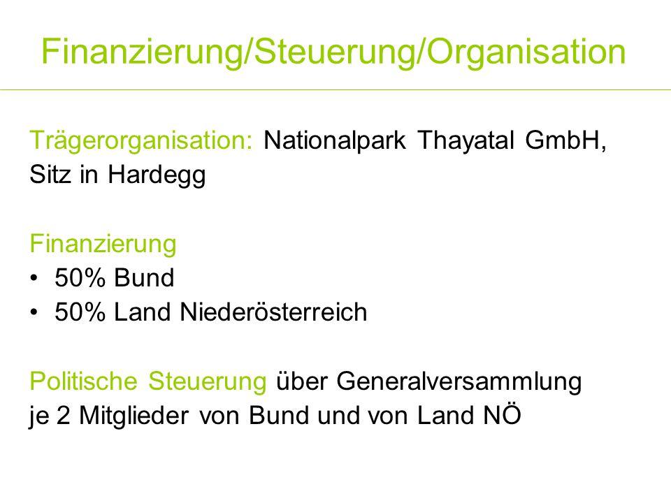 Finanzierung/Steuerung/Organisation
