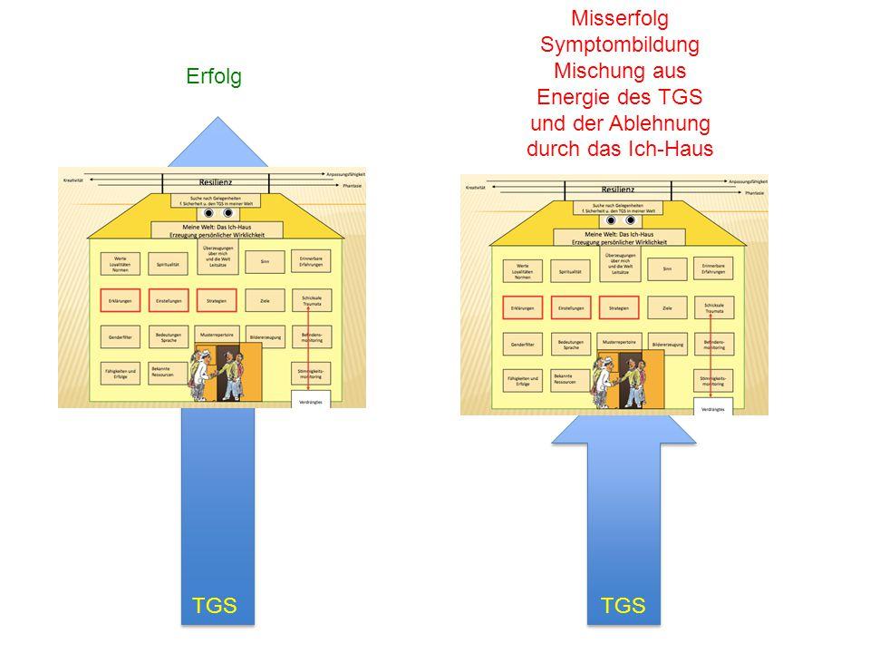 Mischung aus Energie des TGS und der Ablehnung durch das Ich-Haus