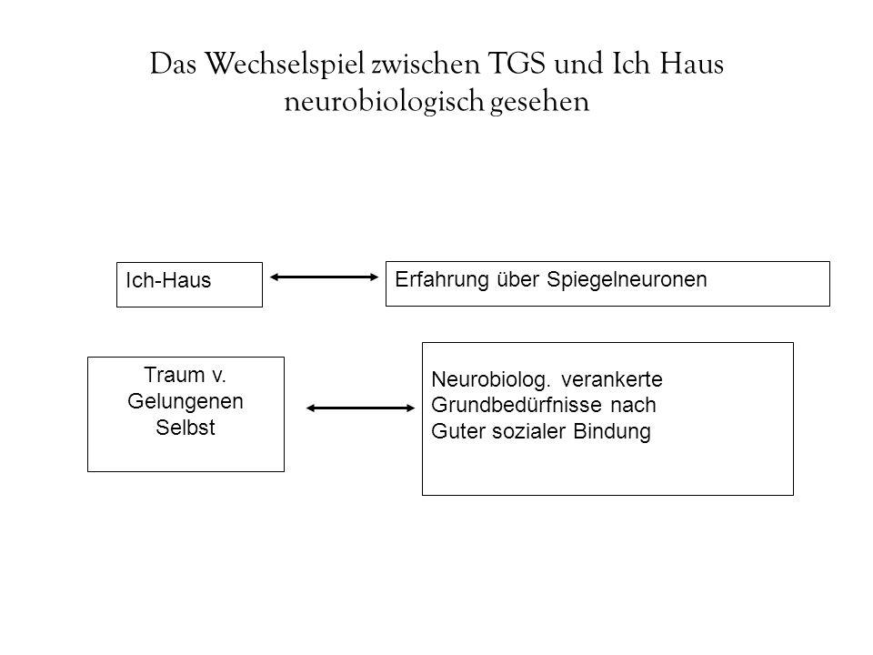 Das Wechselspiel zwischen TGS und Ich Haus neurobiologisch gesehen