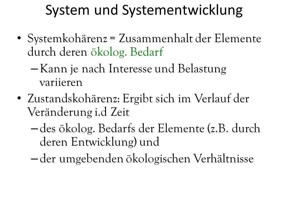 System und Systementwicklung