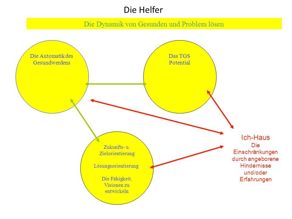 Die Helfer Die Dynamik von Gesunden und Problem lösen Ich-Haus