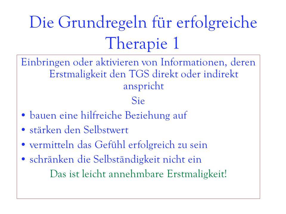 Die Grundregeln für erfolgreiche Therapie 1
