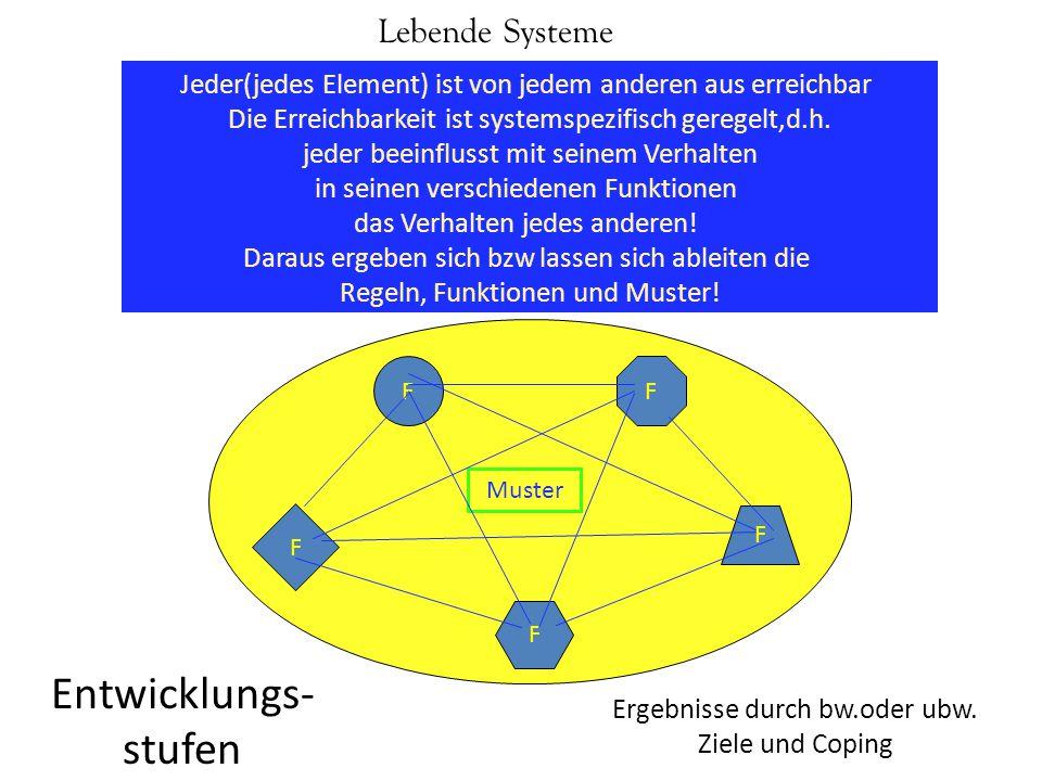 Entwicklungs-stufen Lebende Systeme