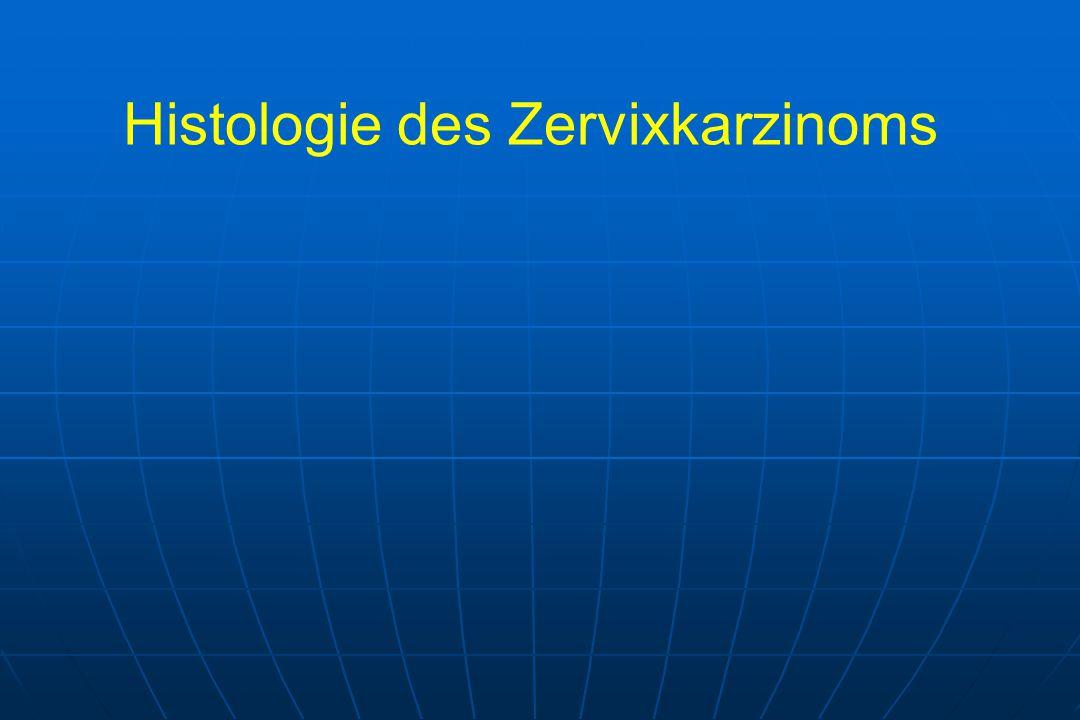 Histologie des Zervixkarzinoms