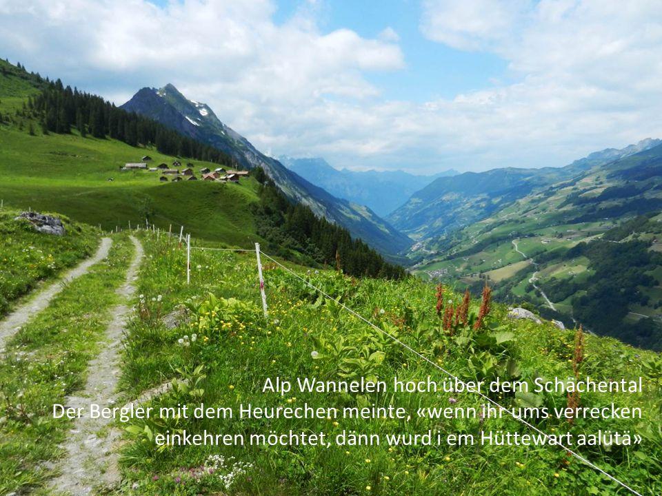 Alp Wannelen hoch über dem Schächental