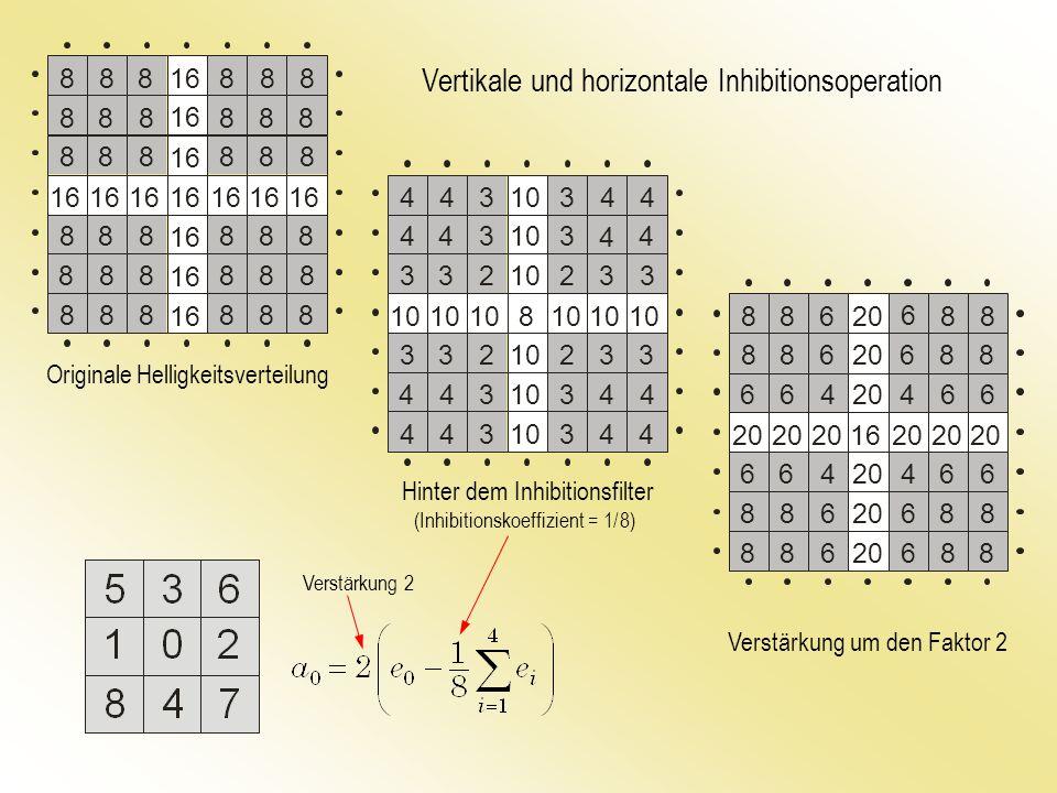 Vertikale und horizontale Inhibitionsoperation