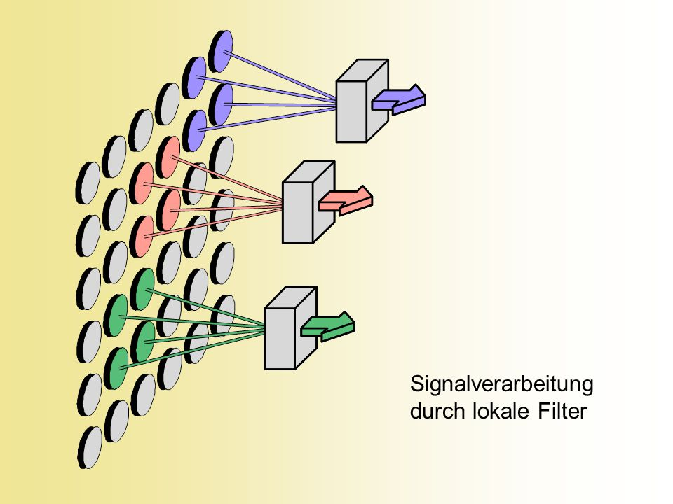 Signalverarbeitung durch lokale Filter