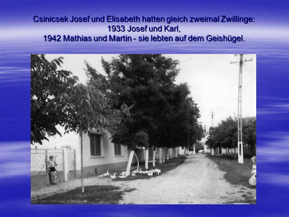 Csinicsek Josef und Elisabeth hatten gleich zweimal Zwillinge: 1933 Josef und Karl, 1942 Mathias und Martin - sie lebten auf dem Geishügel.