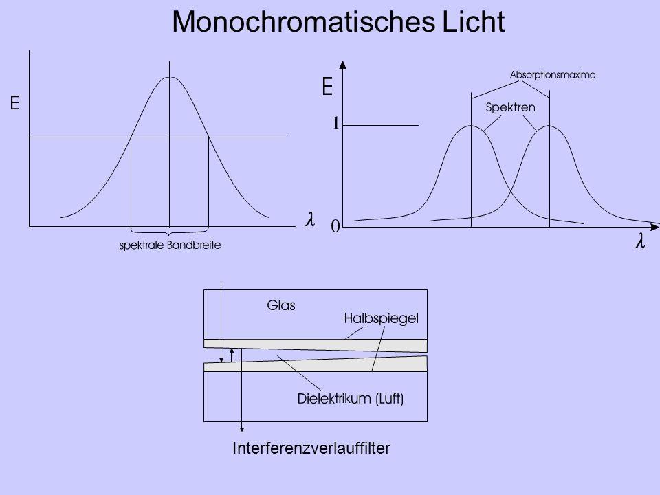 Monochromatisches Licht