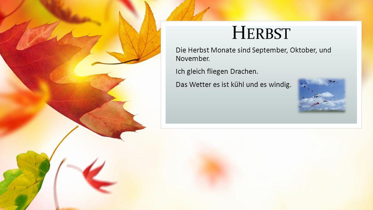 Herbst Die Herbst Monate sind September, Oktober, und November.