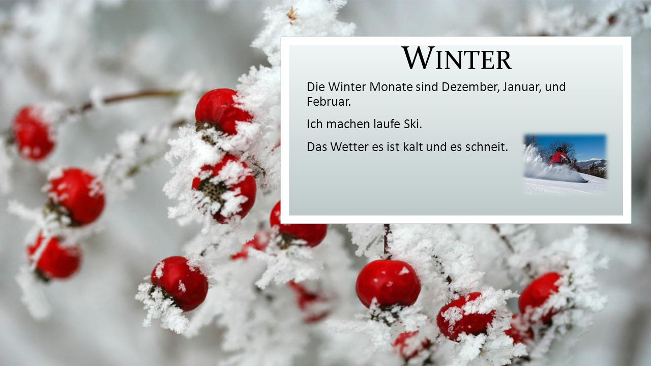 Winter Die Winter Monate sind Dezember, Januar, und Februar.
